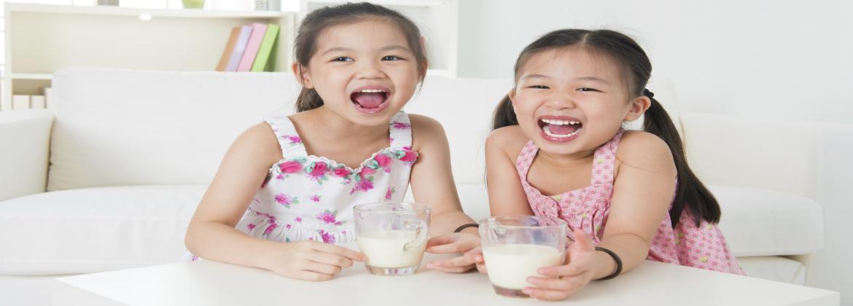 Holland Milk